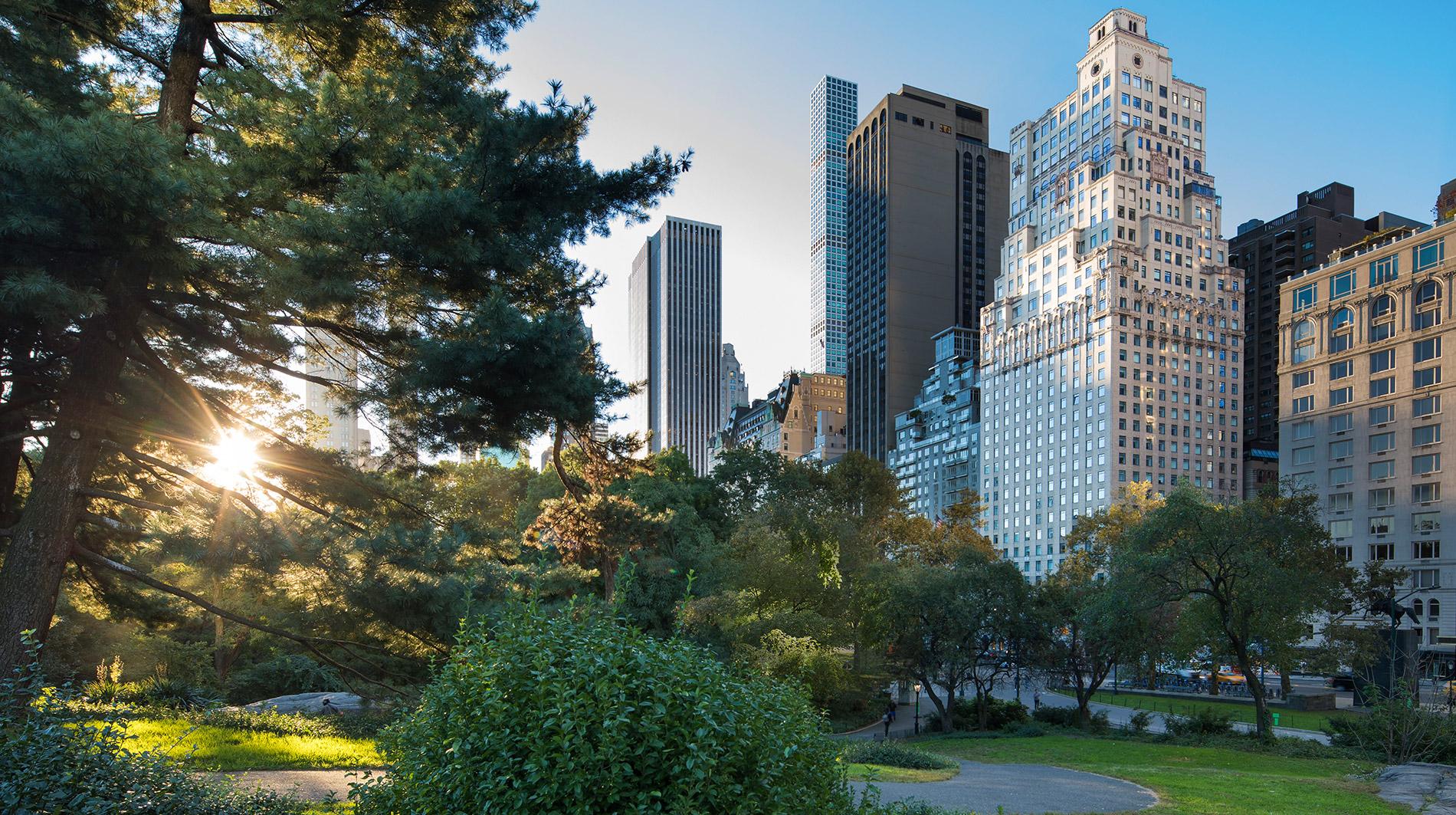 the ritz carlton new york central park hotel